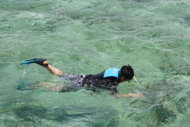 Snorkelen met een wetsuit of shorty.