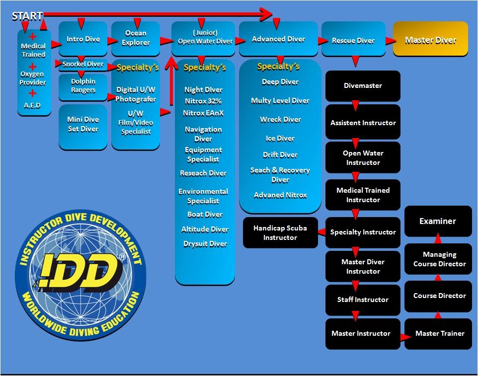 cursusaanbod en opleidingschema van de IDD