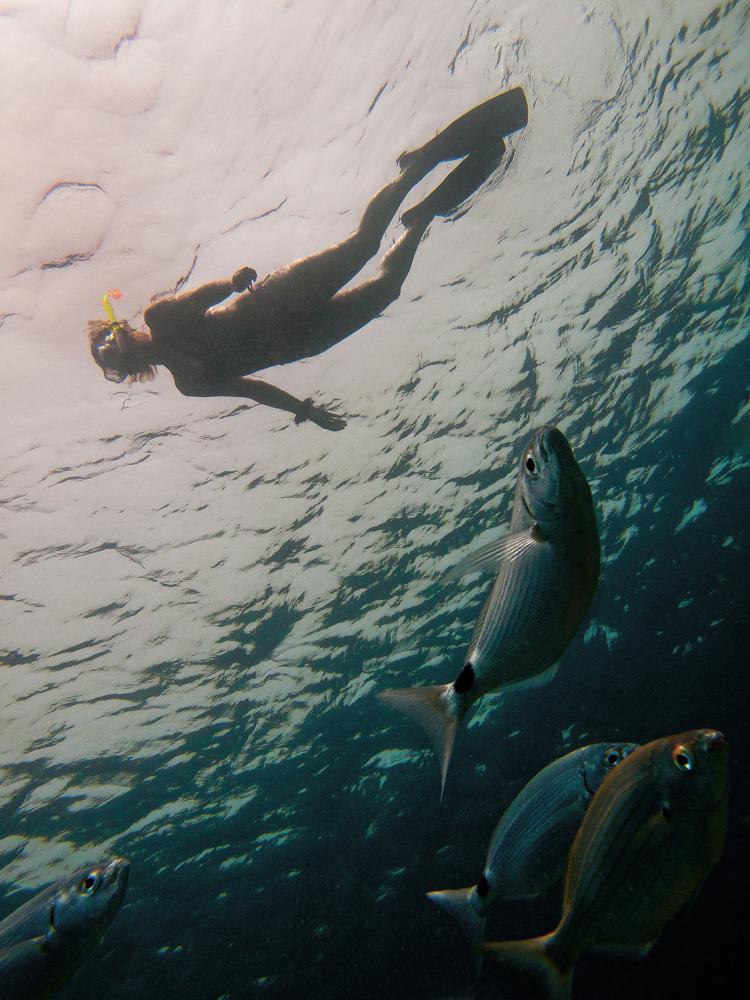 snorkelen Lanzarote