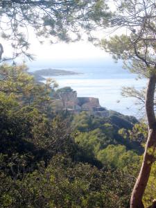 Nationaal Park Port Cros in Frankrijk