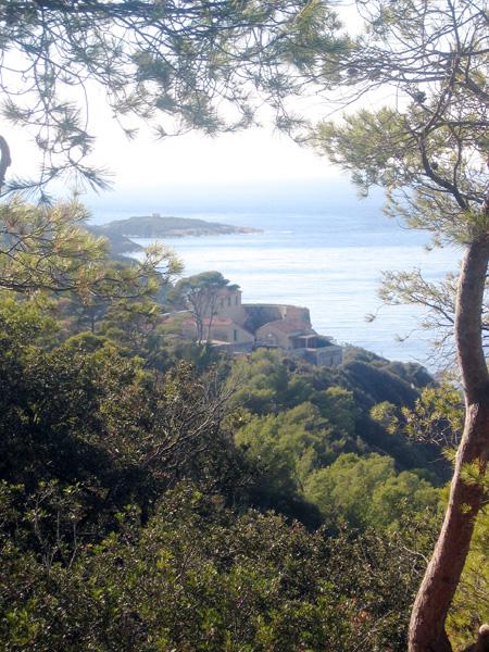 Duiken in Port-Cros – Frankrijk
