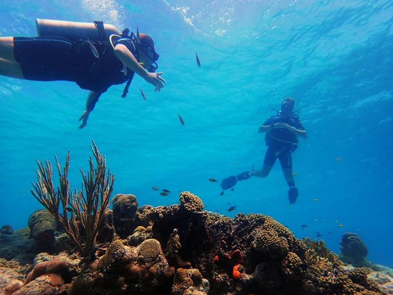 Directorsbay duiken op Curaçao