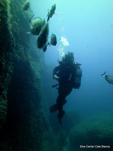 Duiken op Menorca langs de wand bij Slipway